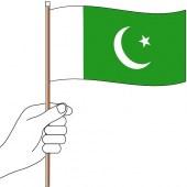 Pakistan Hand Flag Handwaver