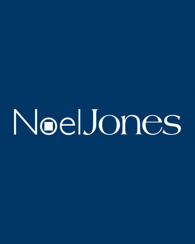 Noel Jones Real Estate Flags