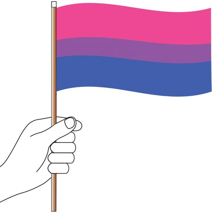 Bisexual Handwaver Flag