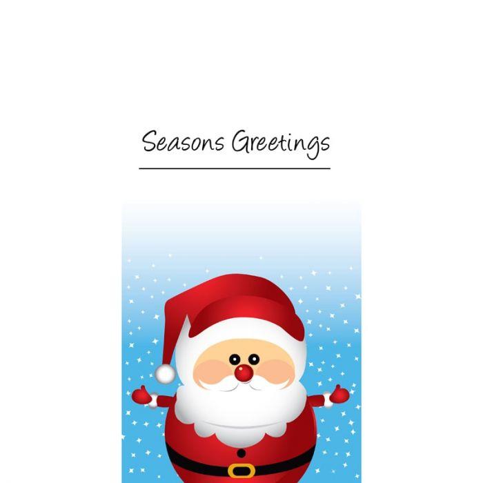 Christmas Flag Light Blue with Santa (68)