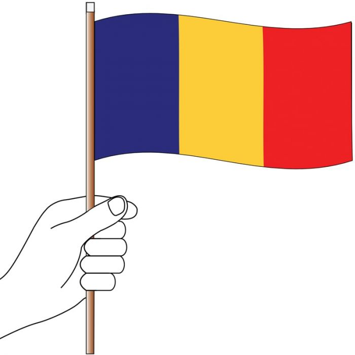 Chad Handwaver Flag 300mm x 150mm (Knitted)
