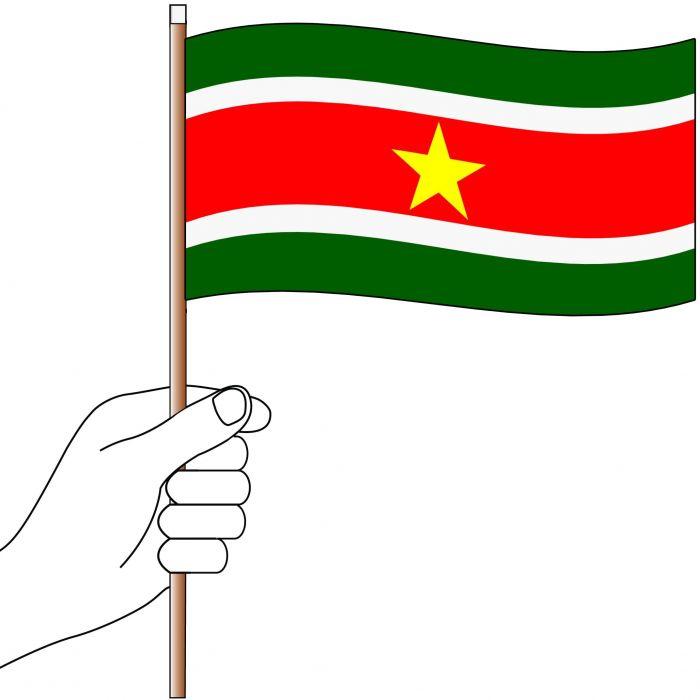 Suriname Handwaver Flag