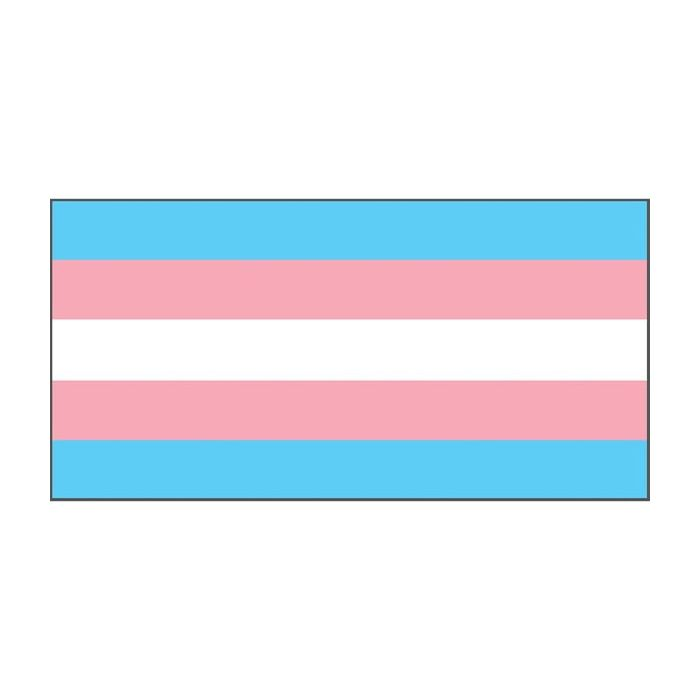 Transgender Pride Flag Flags Banners Custom Printing Marquees Flagworld