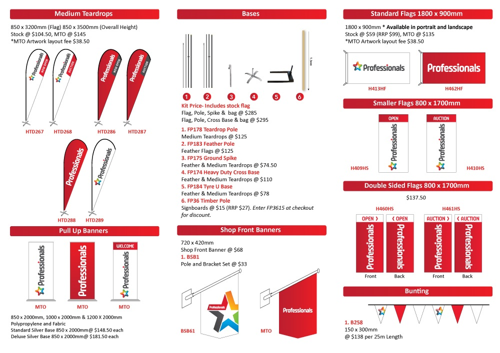 Professionals Brochure Page 2